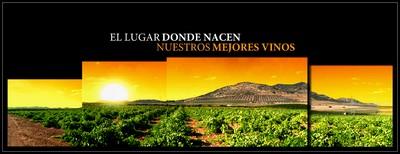Bodegas Ferca, el lugar donde nacen nuestros mejores vinos