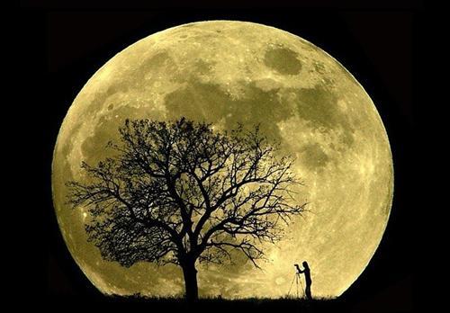 http://carrero.es/wp-content/uploads/2008/06/luna-gigante.jpg