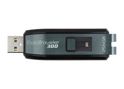 kingston datatraveler 300 con 256 gb
