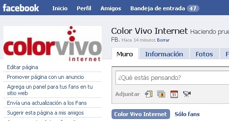 colorvivo fans facebook
